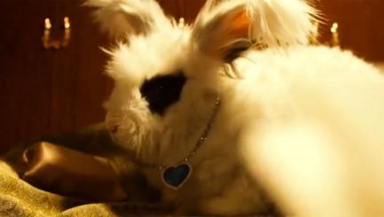 Adorable rabbits recreate your favorite romantic movies