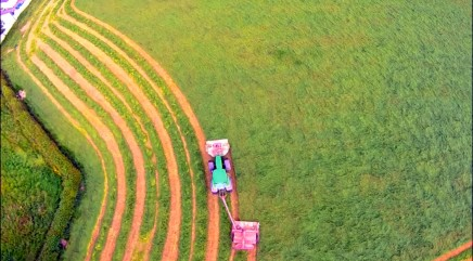 The mesmerizing art of mowing