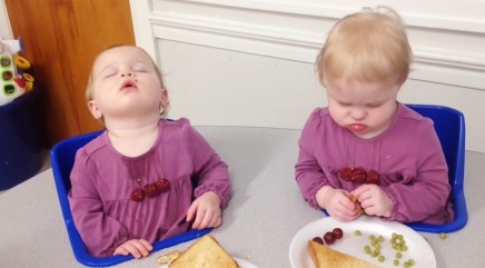 Twin babies are just too sleepy to get through lunch