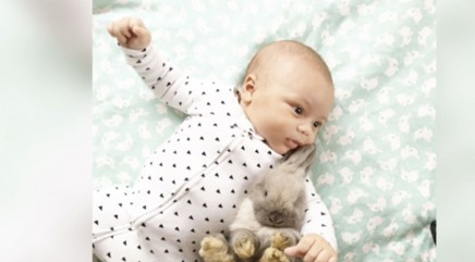 10-week old cuddles with rabbits in cute photos
