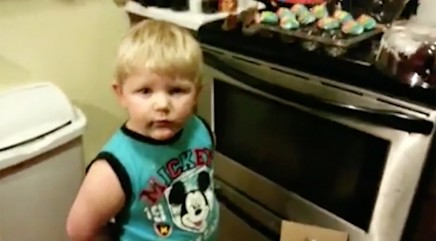 Little boy tries to blame cupcake crime on another culprit