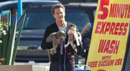 Men in Hollywood who love their cats