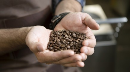 How the pros select the finest coffee beans