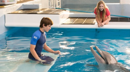 Exclusive first look at 'Dolphin Tale 2'