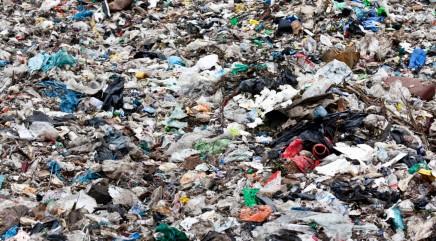 Couple digs through tons of garbage to retrieve very pricey item