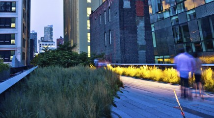 Why the High Line in NYC is a sight to see