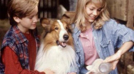 A look back at star's adorable film debut in 'Lassie'