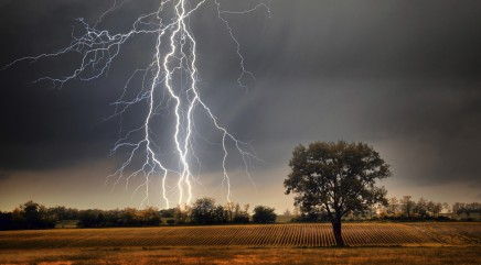 Man struck by lightning, lives to tell about it