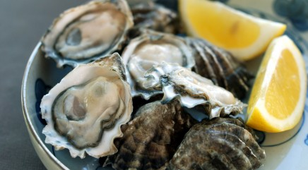 A true farm-to-table oyster experience