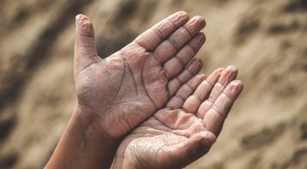 Expert reveals why our fingers wrinkle in water